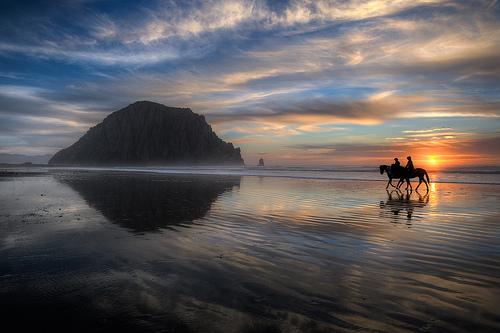 Horses On Beach, Revised
