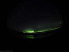 Northern Fish Lights by katrin glaesmann