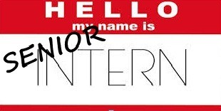 Senior Intern. 27 August 2013